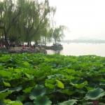 China 2012 03