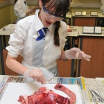Science Club 2013 01