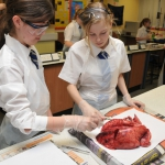 Science Club 2013 05