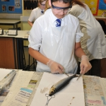 Science Club 2013 07
