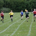 sports-day-2015-22