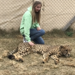 south-africa-trip-2017-10